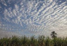 一堆云在天空的 库存照片