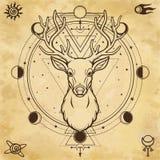 一头有角的鹿的动画画象-木头的精神 异教神 库存例证