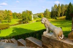 一头狮子的大石楼梯和雕塑在一个垫座的在Pavlovsk停放,圣彼德堡,俄罗斯 库存照片