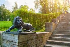 一头狮子的大石楼梯和雕塑在一个垫座的在Pavlovsk停放,圣彼德堡,俄罗斯 免版税库存照片
