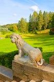 一头狮子的大石楼梯和雕塑在Pavlovsk的停放,圣彼德堡,俄罗斯 库存照片