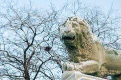 一头狮子的雕塑在海军部堤防的在一冷淡的天 免版税库存图片