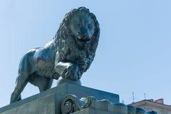 一头狮子的雕塑本质上 免版税图库摄影