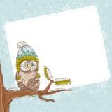 一头猫头鹰的圣诞卡在帽子的 库存照片
