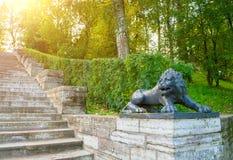 一头黑狮子的大石楼梯和雕塑在一个垫座的在Pavlovsk停放,圣彼得堡,俄罗斯 免版税库存照片