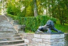 一头黑狮子的大石楼梯和雕塑在一个垫座的在Pavlovsk停放,圣彼德堡,俄罗斯 免版税库存照片