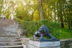 一头黑狮子的大石楼梯和雕塑在垫座的在Pavlovsk在圣彼德堡,俄罗斯附近停放 免版税库存图片