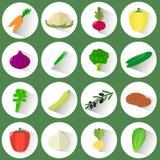 一套不同的菜象在一个白色圈子的与在绿色背景的一个阴影 免版税图库摄影