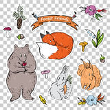 一套与动物的贴纸从森林 皇族释放例证