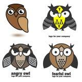 一套四头五颜六色的猫头鹰棕色事务 免版税图库摄影