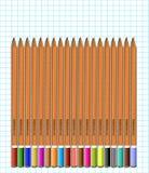 一套在纸的色的铅笔在笼子 向量 免版税库存图片