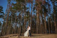 一套婚礼礼服的Photoshoot恋人在海附近的山 库存照片