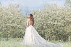 一套嫩空气婚礼礼服的美丽的甜女孩新娘在阳光的一个开花的春天庭院里在日落的 艺术 免版税库存照片
