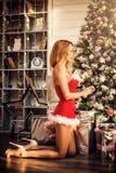 一套性感的圣诞老人服装的美丽的妇女装饰圣诞树 免版税库存图片