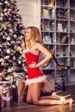一套性感的圣诞老人服装的美丽的妇女装饰圣诞树 库存照片