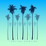 一套棕榈树剪影在一个现实样式的在黄色明亮的蓝色背景 图库摄影