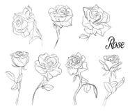 一套玫瑰剪影  玫瑰各种各样的花和叶子  在葡萄酒样式的手拉的传染媒介例证 库存照片