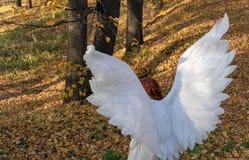 一套白色天使服装的一名妇女在秋天风景的背景 免版税库存图片