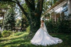 一套美丽的婚礼礼服的一个金发碧眼的女人在一棵巨大的树附近站立 新娘沿绿草走并且敬佩 库存照片