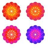 一套芽 五颜六色的花 库存例证