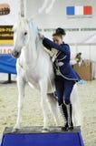 一套蓝色衣服的妇女骑师与一个白马 国际马陈列 库存图片
