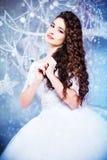 一套豪华婚礼礼服的美丽的深色的新娘在内部,冬天样式 库存照片