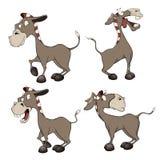 一套驮货驴子动画片 库存图片