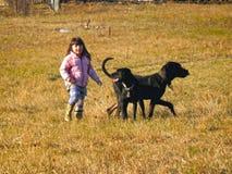 一女孩和两条狗在草甸 免版税库存照片