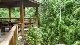一家餐馆的木阳台在一个热带密林旁边的 图库摄影