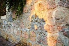 一对亲吻的夫妇的阴影在爱的在一个老石墙上 免版税图库摄影