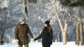一对夫妇的浪漫步行在雪的在美妙的冬天天气停放 股票视频