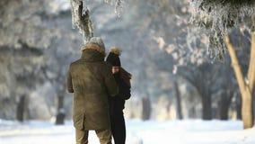 一对夫妇的浪漫步行在雪的在美妙的冬天天气停放 股票录像