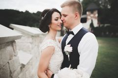 一对年轻婚礼夫妇的肉欲的画象 室外 免版税库存图片