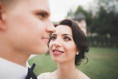 一对年轻婚礼夫妇的肉欲的画象 室外 免版税库存照片