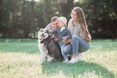 一对愉快的已婚夫妇的晴朗的图片与狗和孩子的 免版税库存图片