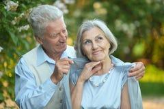 一对愉快的更旧的夫妇的画象 库存图片