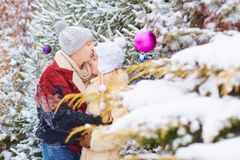 一对爱恋的夫妇在冬天在公园 图库摄影