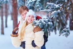 一对爱恋的夫妇在冬天在公园 免版税库存图片