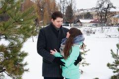 一对爱恋的夫妇在冬天城市公园走 库存照片