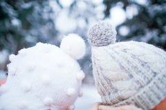 一对爱恋的夫妇的两个帽子在雪的在冬天本质上 免版税库存照片