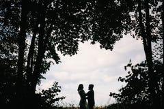 一对爱恋的夫妇的剪影 库存照片