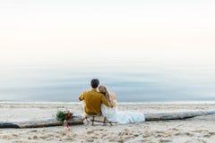 一对美好的夫妇坐日志和神色到海 在海滩的浪漫日期 回到视图 婚姻 库存图片