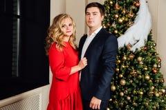 一对美好的夫妇的画象在圣诞树背景的 新年,红色礼服,蓝色西装 免版税库存照片