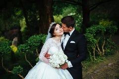 一对非常美好的婚姻的夫妇的伟大的画象 免版税库存照片