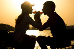 一对年轻夫妇的剪影在离开的爱的在野餐出于玻璃觚镇饮用的酒团体  库存图片