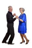 一对更旧的夫妇的画象 免版税库存照片