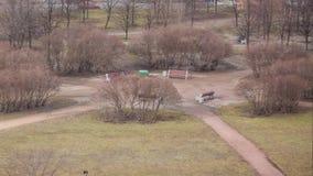 一年在几秒钟内 季节性变化在公园上 股票录像
