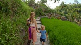 一年轻女人和她小的儿子步行的慢动作射击在米领域大阳台中 影视素材