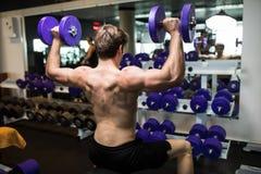 一年轻男性做的重量级的锻炼的背面图与哑铃的 免版税库存照片