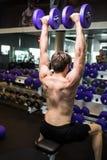 一年轻男性做的重量级的锻炼的背面图与哑铃的 库存图片